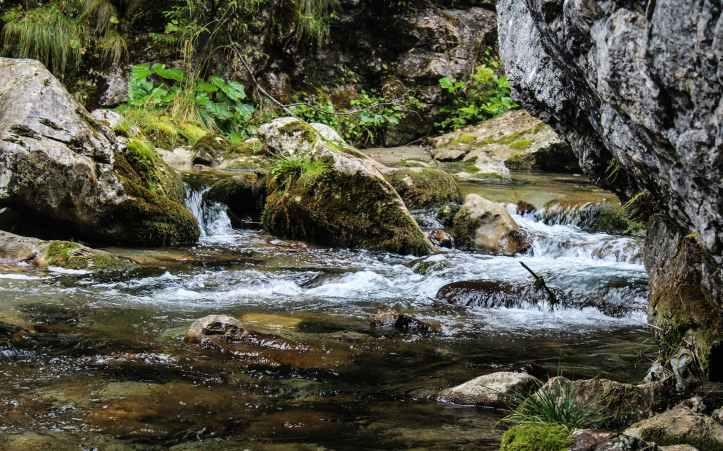 nature-brook-creek-stream.jpg